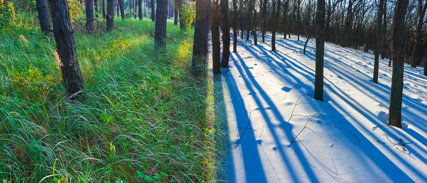 Lato estivo e lato invernale del materasso: scopri tutte le differenze